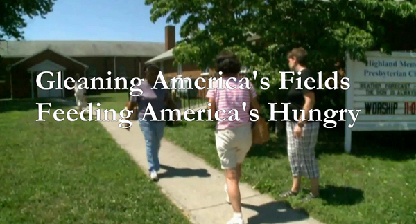 Gleaning America's Fields ~ Feeding America's Hungry