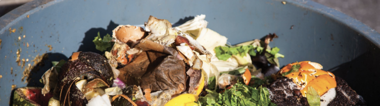 Eat Right and Reduce Food Waste